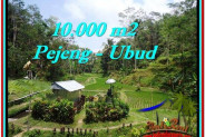 Affordable PROPERTY 10,000 m2 LAND SALE IN UBUD BALI TJUB519