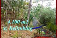 FOR SALE Beautiful PROPERTY LAND IN TABANAN TJTB218