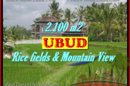 FOR SALE 2,100 m2 LAND IN UBUD TJUB423