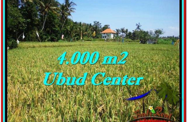 Exotic PROPERTY LAND SALE IN UBUD TJUB527