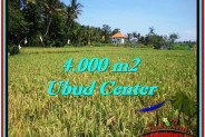 Exotic PROPERTY LAND IN UBUD FOR SALE TJUB527