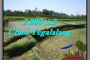 Beautiful PROPERTY LAND SALE IN UBUD TJUB529