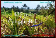Beautiful PROPERTY Canggu Pererenan BALI LAND FOR SALE TJCG196