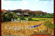 580 m2 LAND SALE IN Canggu Pererenan BALI TJCG197