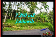 Magnificent PROPERTY LAND IN TABANAN FOR SALE TJTB226