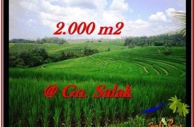 Exotic PROPERTY TABANAN LAND FOR SALE TJTB227