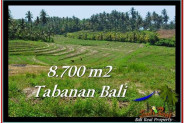 Affordable PROPERTY 8,700 m2 LAND SALE IN TABANAN BALI TJTB233