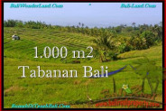 Beautiful PROPERTY Tabanan Selemadeg 1,000 m2 LAND FOR SALE TJTB237