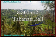 Exotic PROPERTY LAND FOR SALE IN TABANAN TJTB238
