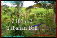7,100 m2 LAND SALE IN TABANAN TJTB240