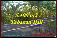Exotic PROPERTY 5,400 m2 LAND FOR SALE IN Tabanan Selemadeg TJTB241