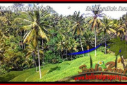 Exotic UBUD BALI 2,500 m2 LAND FOR SALE TJUB496