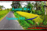 Magnificent 700 m2 LAND SALE IN UBUD BALI TJUB497