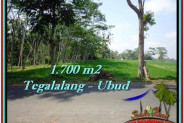 FOR SALE Magnificent 1,700 m2 LAND IN UBUD BALI TJUB518