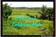 Tabanan Selemadeg BALI LAND FOR SALE TJTB245