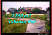 Magnificent PROPERTY LAND IN TABANAN FOR SALE TJTB247
