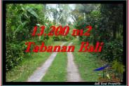 FOR SALE Beautiful LAND IN Tabanan Selemadeg BALI TJTB255