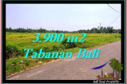 Beautiful PROPERTY TABANAN LAND FOR SALE TJTB258