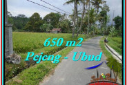 FOR SALE Beautiful PROPERTY 650 m2 LAND IN Ubud Tampak Siring TJUB522