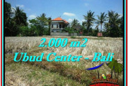 Exotic LAND FOR SALE IN UBUD TJUB524