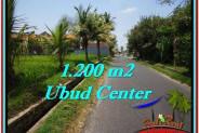 FOR SALE Magnificent 1,200 m2 LAND IN UBUD BALI TJUB525