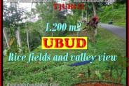 Magnificent 1,200 m2 LAND SALE IN UBUD BALI TJUB422