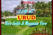 FOR SALE Beautiful PROPERTY LAND IN UBUD TJUB423