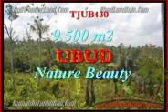 Beautiful 9,500 m2 LAND SALE IN UBUD BALI TJUB430