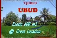 Beautiful PROPERTY 600 m2 LAND IN Sentral Ubud FOR SALE TJUB437