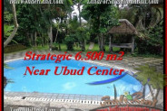 Affordable 6,500 m2 LAND IN UBUD BALI FOR SALE TJUB479