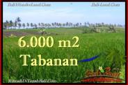 Tabanan Selemadeg BALI LAND FOR SALE TJTB267
