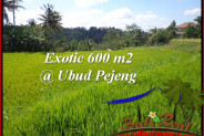 Magnificent PROPERTY LAND FOR SALE IN UBUD BALI TJUB513