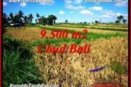 Affordable PROPERTY 9,500 m2 LAND SALE IN Sentral Ubud TJUB548