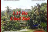 FOR SALE Beautiful 15,700 m2 LAND IN UBUD BALI TJUB549