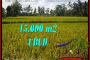 15,000 m2 LAND FOR SALE IN UBUD BALI TJUB551