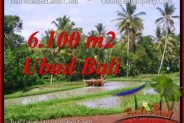 Exotic 6,100 m2 LAND IN UBUD BALI FOR SALE TJUB552