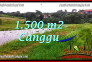 FOR SALE Magnificent PROPERTY LAND IN Canggu Batu Bolong BALI TJCG198