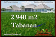 Magnificent PROPERTY 2,940 m2 LAND IN Tabanan Selemadeg FOR SALE TJTB265