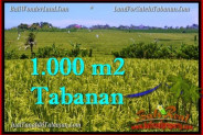 Magnificent PROPERTY 1,000 m2 LAND IN Tabanan Selemadeg FOR SALE TJTB266