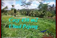 FOR SALE Affordable LAND IN Ubud Pejeng BALI TJUB535