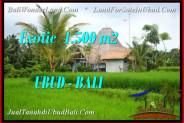 FOR SALE Affordable PROPERTY 1,500 m2 LAND IN Ubud Pejeng TJUB541