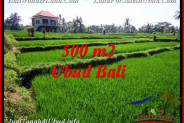 Beautiful 500 m2 LAND FOR SALE IN Sentral Ubud TJUB543