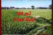 Magnificent PROPERTY Sentral Ubud 500 m2 LAND FOR SALE TJUB545