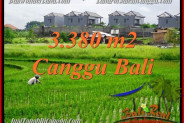 Exotic PROPERTY 3,380 m2 LAND SALE IN CANGGU BALI TJCG199