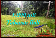 Affordable Tabanan Penebel BALI LAND FOR SALE TJTB278
