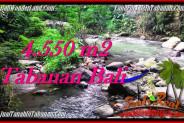 Exotic LAND SALE IN Tabanan Penebel BALI TJTB284