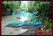 FOR SALE 8,000 m2 LAND IN TABANAN TJTB287