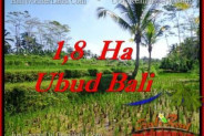 Magnificent LAND IN UBUD FOR SALE TJUB553
