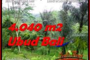 Exotic PROPERTY UBUD LAND FOR SALE TJUB555