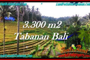 Affordable PROPERTY 3,300 m2 LAND FOR SALE IN Tabanan Selemadeg TJTB274